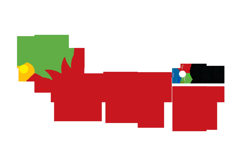 Elfy 2018 SBE